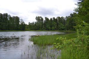 Озеро Сярг